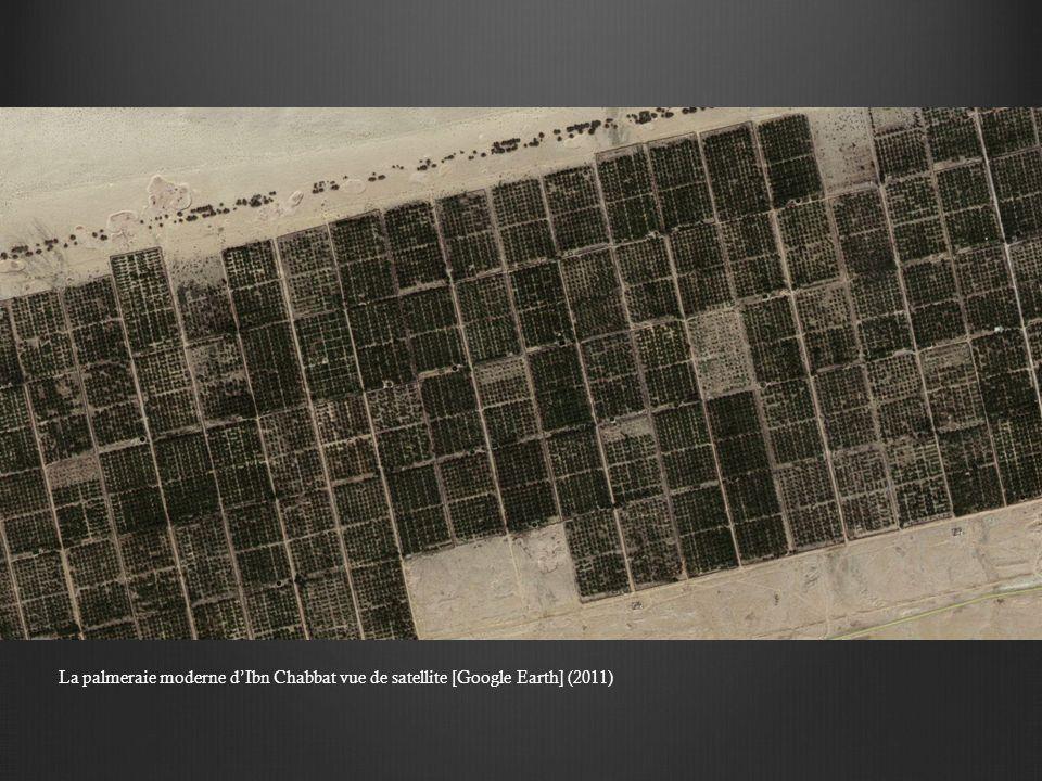 La palmeraie moderne d'Ibn Chabbat vue de satellite [Google Earth] (2011)